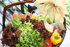 กินผักผลไม้ล้างพิษ (Eat to Detoxify)