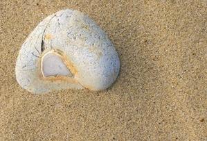 เพื่อนซี้...เรื่องไม่ดีอยู่บนทราย